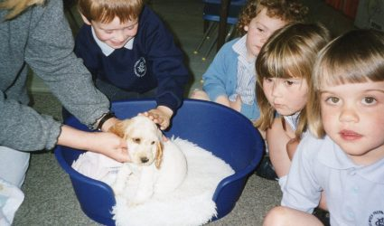 A dog visiting the Nursery Class 1997
