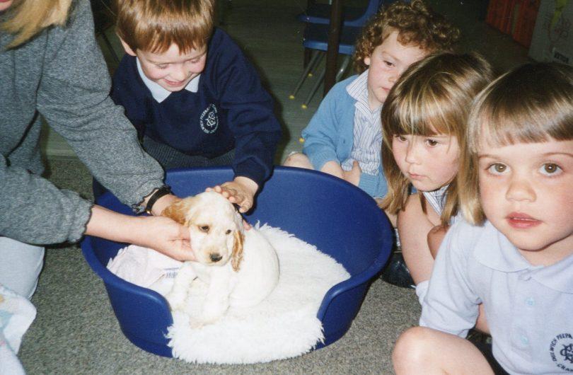 A dog visiting the Nursery Class 1997