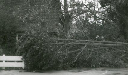 The Storm of 1987 Upper School